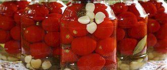 Делікатесні помідори